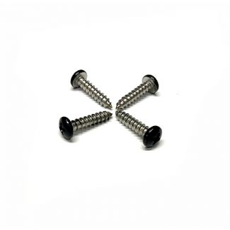 SET OF 4 BLACK STAINLESS SCREWS FOR GTS 300 TURN SIGNALS