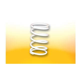 Clutch Adjuster Spring White 50cc