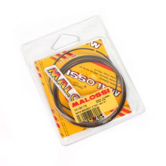Malossi Replacement Piston Rings for Cylinder Kit GTS