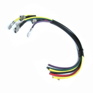 Stator Rewire Kit (Early P200)