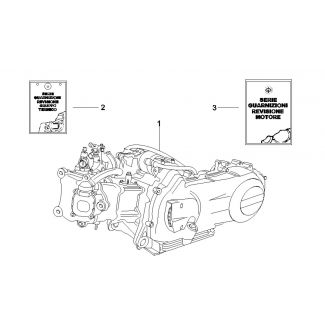 Engine Assembly GTS 250 2006-2009